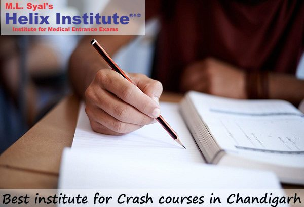 Best institute for crash courses Chandigarh