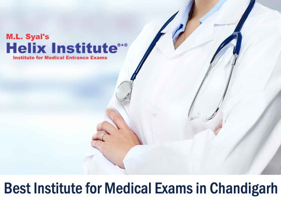 Best institute for medical exams Chandigarh