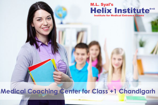 Medical Coaching Center for class +1 Chandigarh