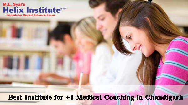 Best Institute for +1 Medical Coaching in Chandigarh